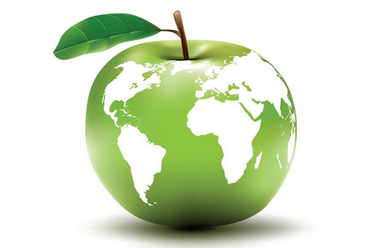 environmental earth concept / apple / globe / vector